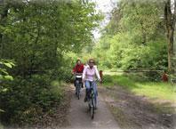foto-fietsers-maashorst