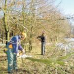Snoeiploeg ANV Maashorstboeren Inzicht in Natuur herfst 2014-400
